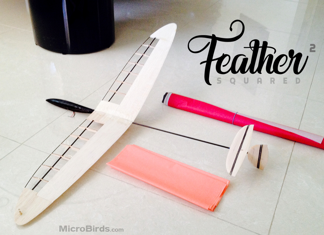 Feather-Squared-ultralight-micro-discus-launch-dlg-glider-2019-desing-microbirds.jpg